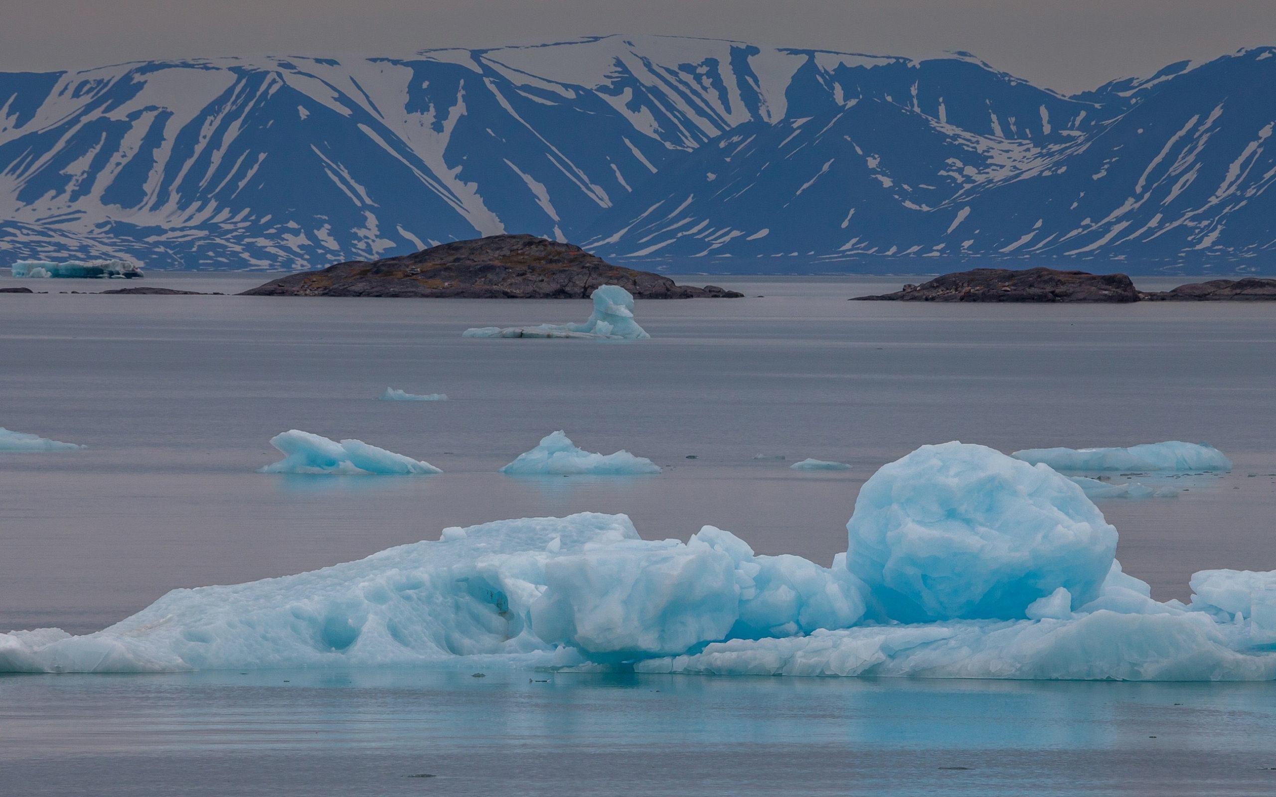 Nord-Ost-Passage (Franz-Josef-Land, Nowaja Semlja, Sewernaja Semlja, Neusibirische Inseln, Wrangel Insel, Tschuktschen Halbinsel)